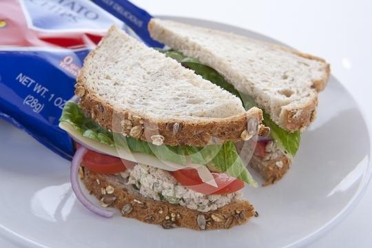 TunaSandwich9957