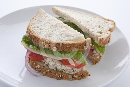 TunaSandwich9960