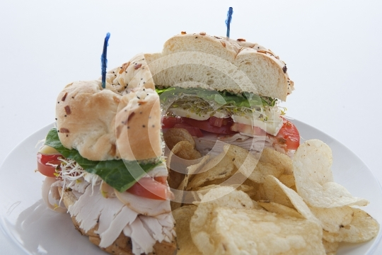 TurkeySandwich9713