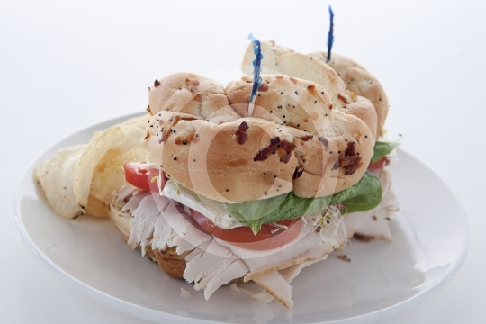 TurkeySandwich9721