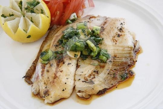 Fish0504