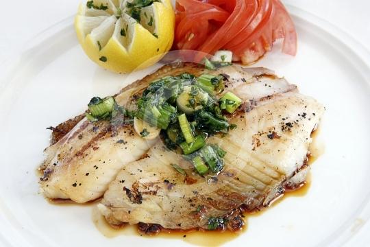 Fish0511