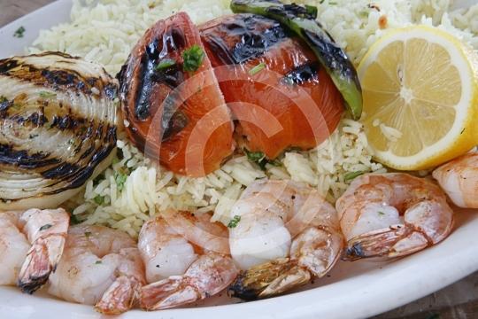 ShrimpKabob9967