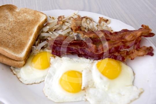 Eggs8192