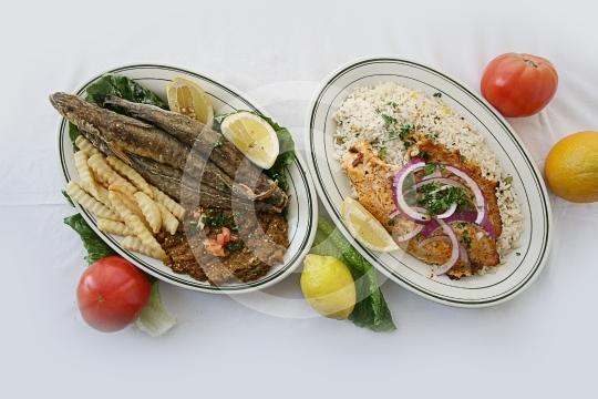 FishesGroup9535