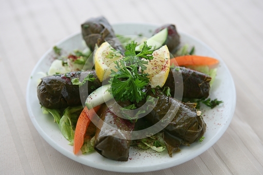 GrapeLeaves6727