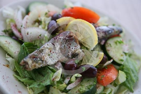 SardineSalad6701
