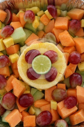 FruitSalad9562