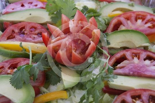 Salad9470