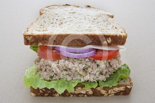 TunaSandwich8929