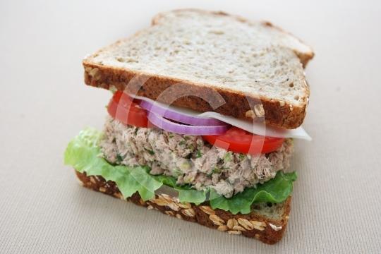 TunaSandwich8936
