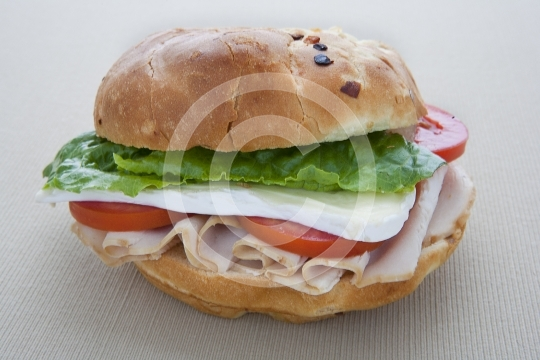 TurkeySandwich8877