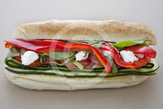 VeggieSandwich8949