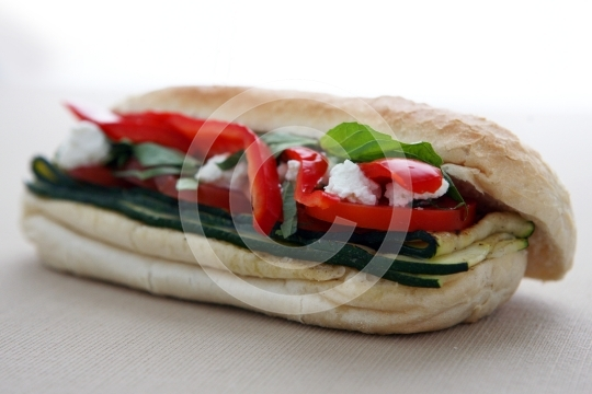VeggieSandwich8979