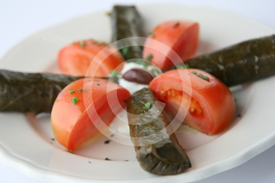 GrapeLeaves4147