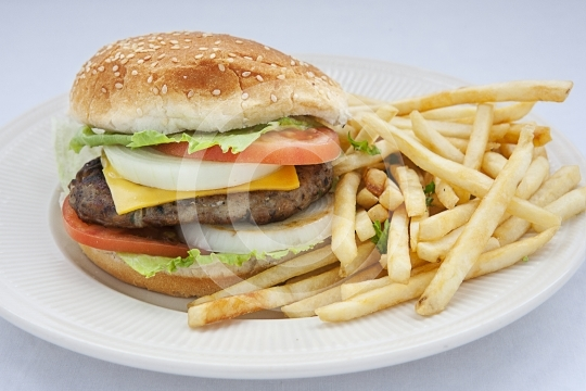 Burger9845