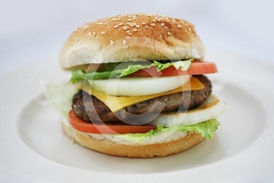 Burger9876