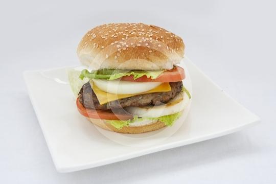 Burger9884