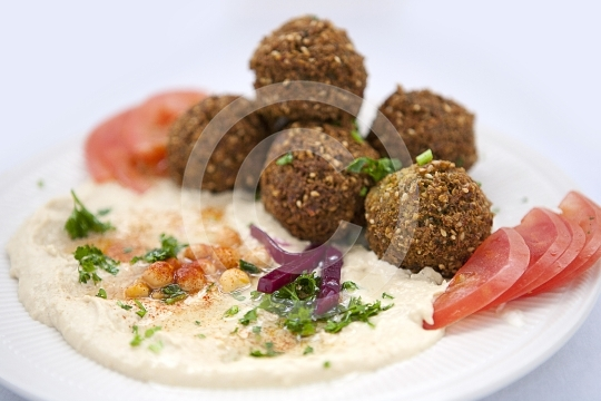 HummusFalafel5793