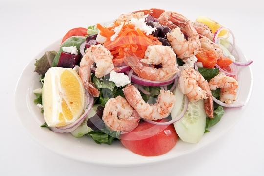 ShrimpSalad9754