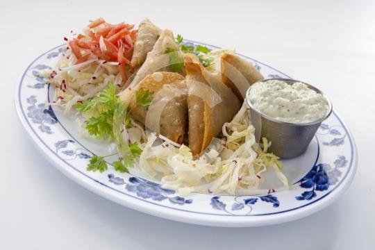 VegetarianSamosa6138
