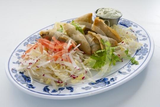VegetarianSamosa6140