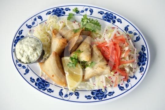 VegetarianSamosa6151