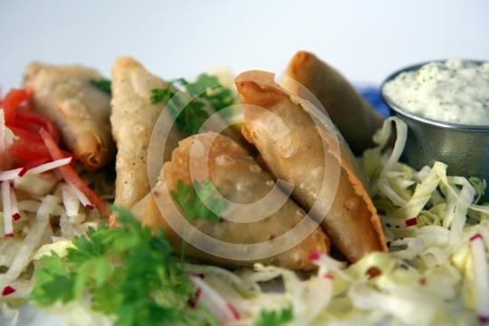 VegetarianSamosa6163