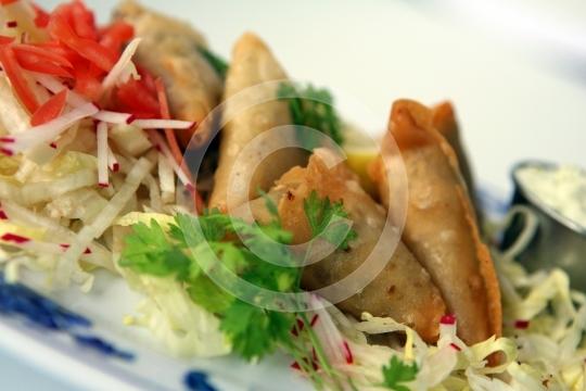 VegetarianSamosa6169