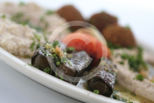 VegetarianCombination6144