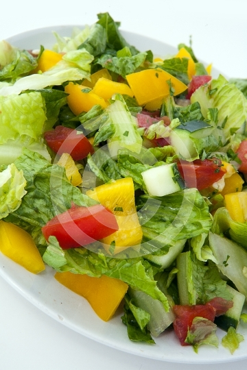 Salad9179