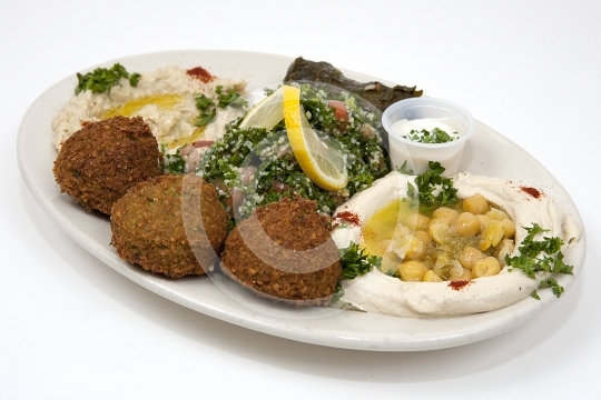VegetarianCombo9993
