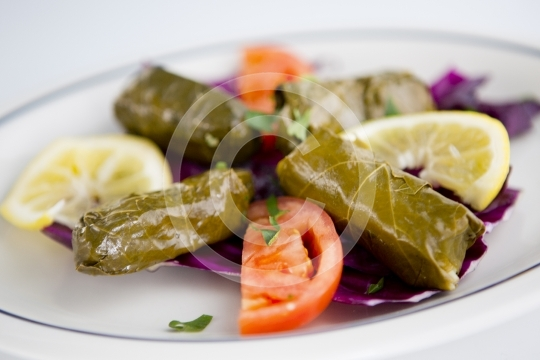 GrapeLeaves5882