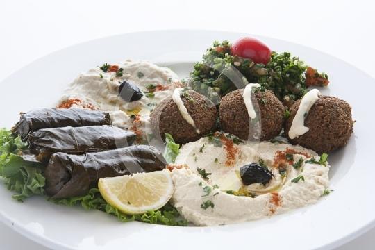 VegetarianCombo2947